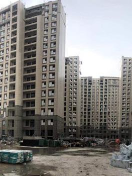 上海浦东川沙